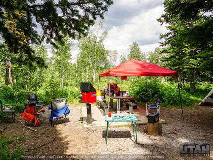 Monte Cristo Campground - MONT - 30