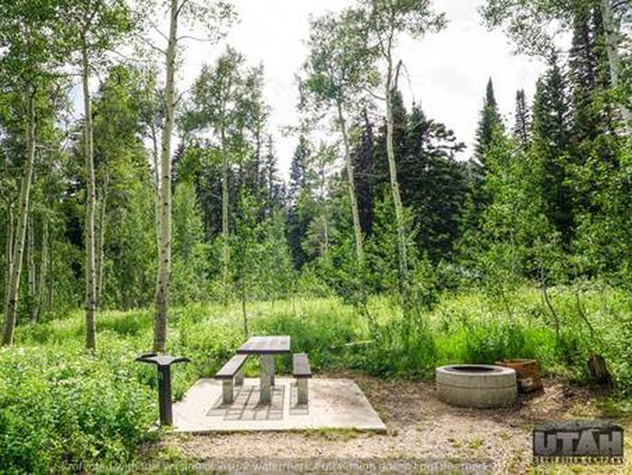 Monte Cristo Campground - MONT - 31
