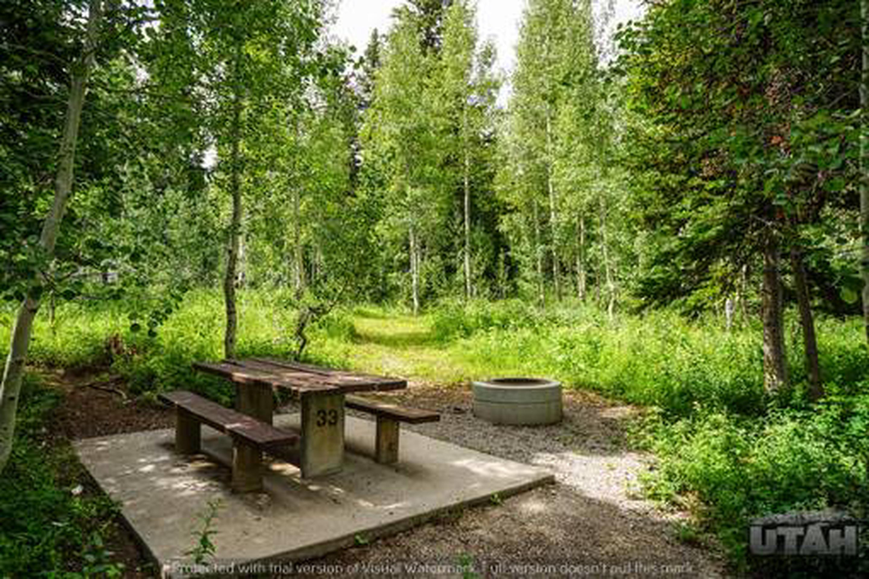 Monte Cristo Campground - MONT - 33