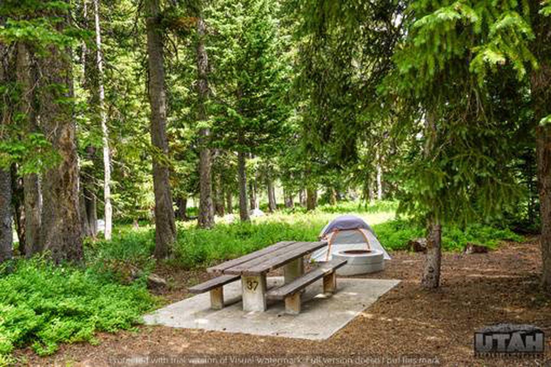 Monte Cristo Campground - MONT - 37
