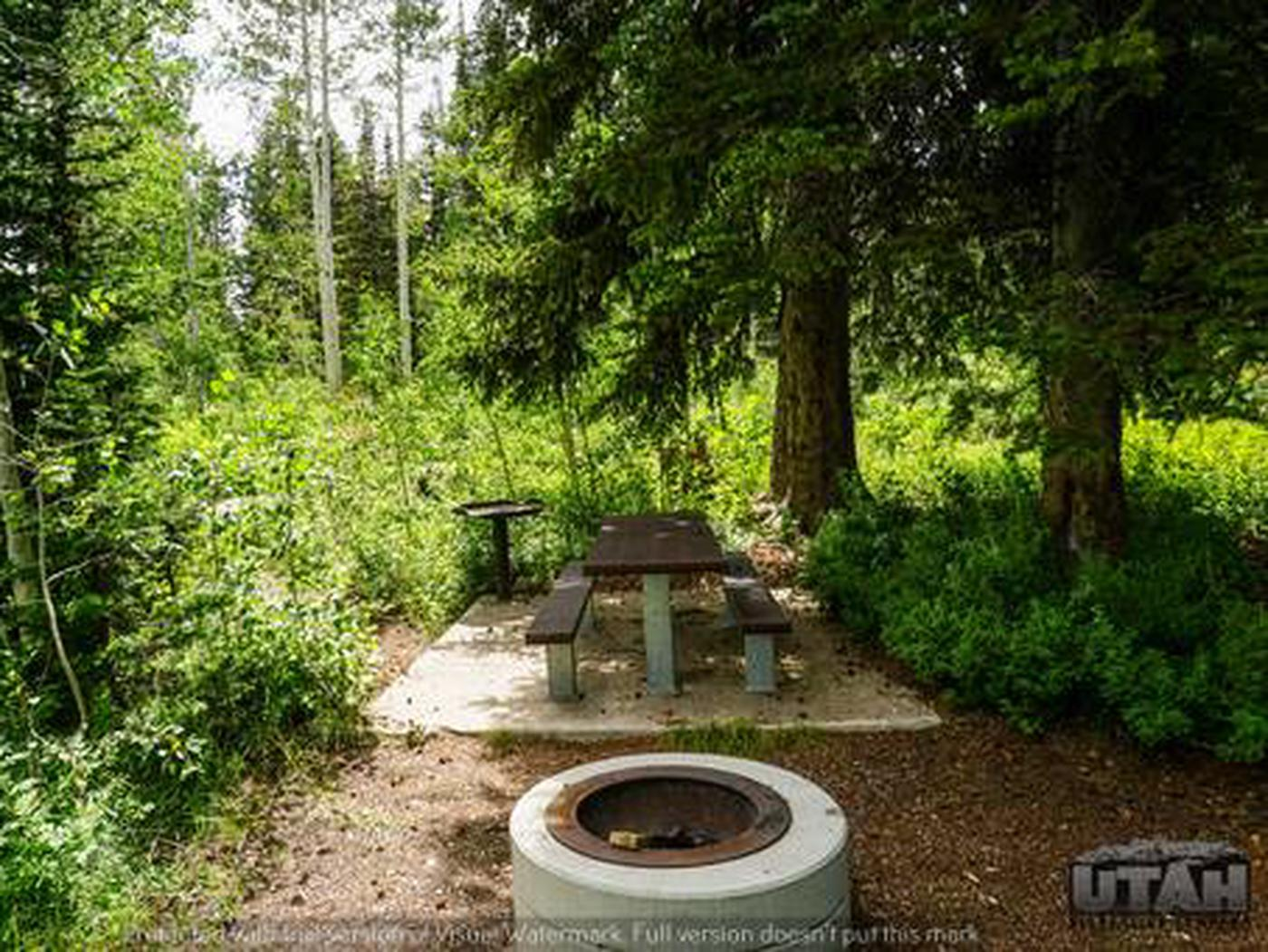 Monte Cristo Campground - MONT - 38
