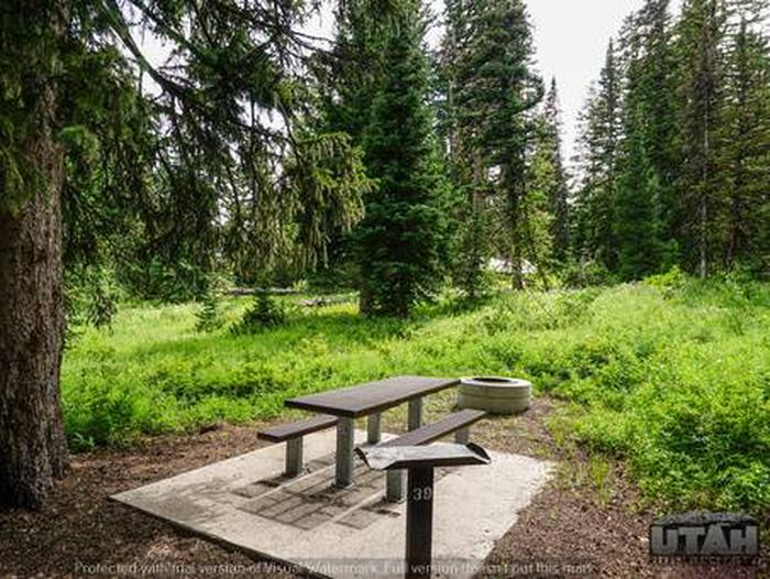 Monte Cristo Campground - MONT - 39