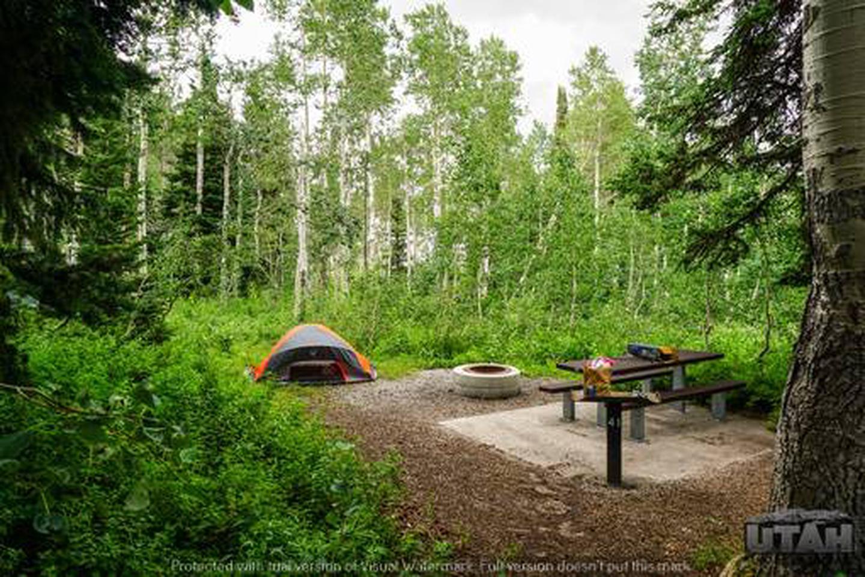 Monte Cristo Campground - MONT - 41