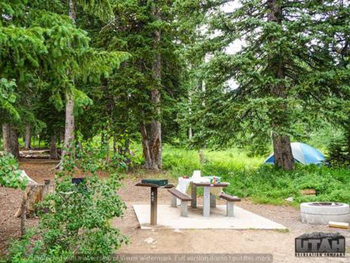 Monte Cristo Campground - MONT - 42