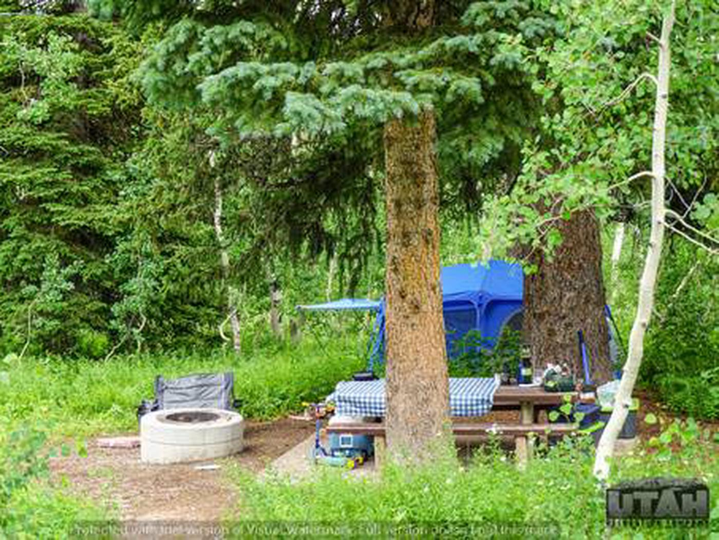 Monte Cristo Campground - MONT - 43