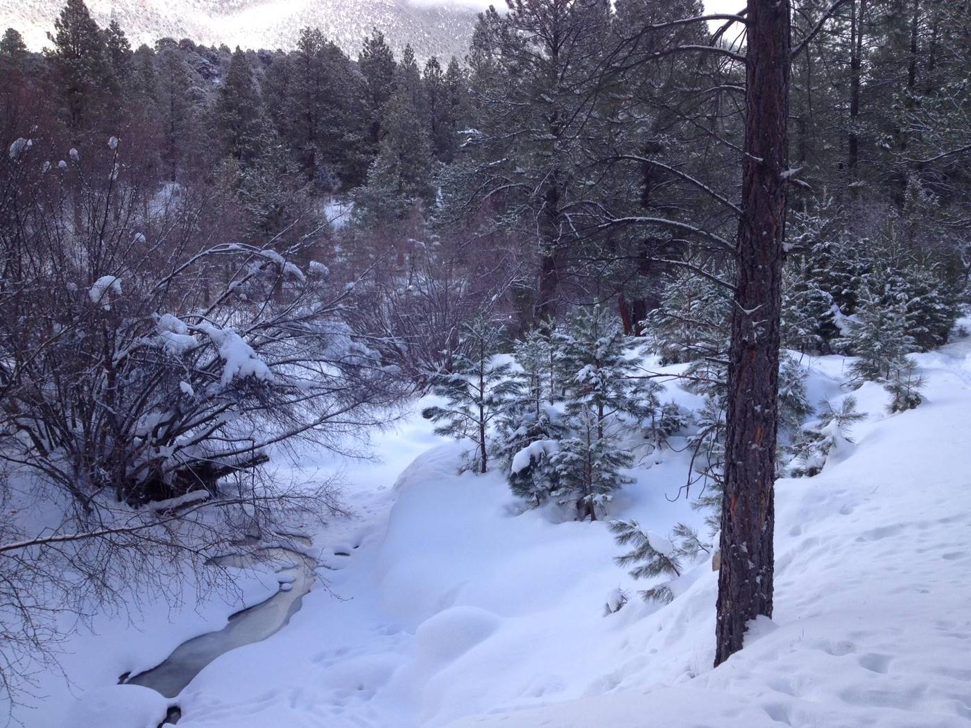 Winter view of the Santa Clara River hiking into the PIne Valley Guard StationView of the Santa Clara River, in the winter, hiking into the Pine Valley Guard Station