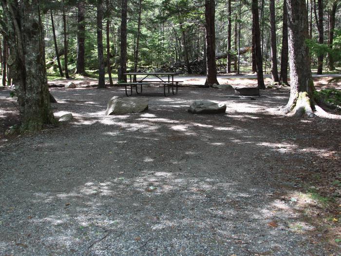 Site A147