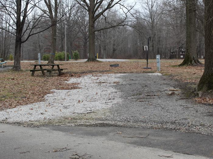 An image of the Maplewood 43 Campsite.The Maplewood 43 Campsite.