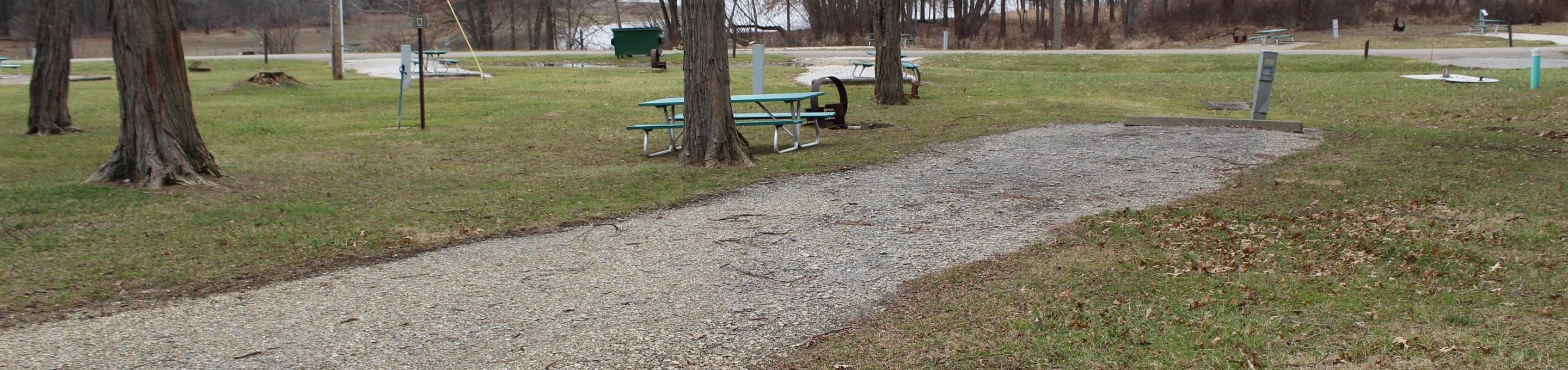 An image of the Maplewood 46 Campsite.The Maplewood 46 Campsite.