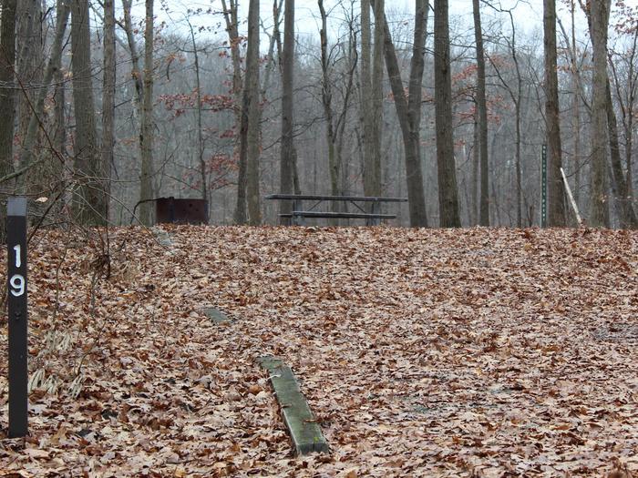 An image of the Oak 19 Campsite.The Oak 19 Campsite.