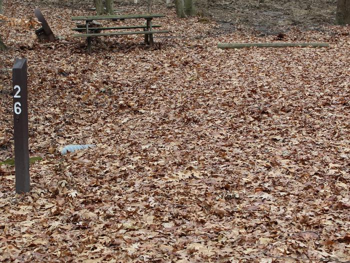An image of the Oak 26 Campsite.The Oak 26 Campsite.