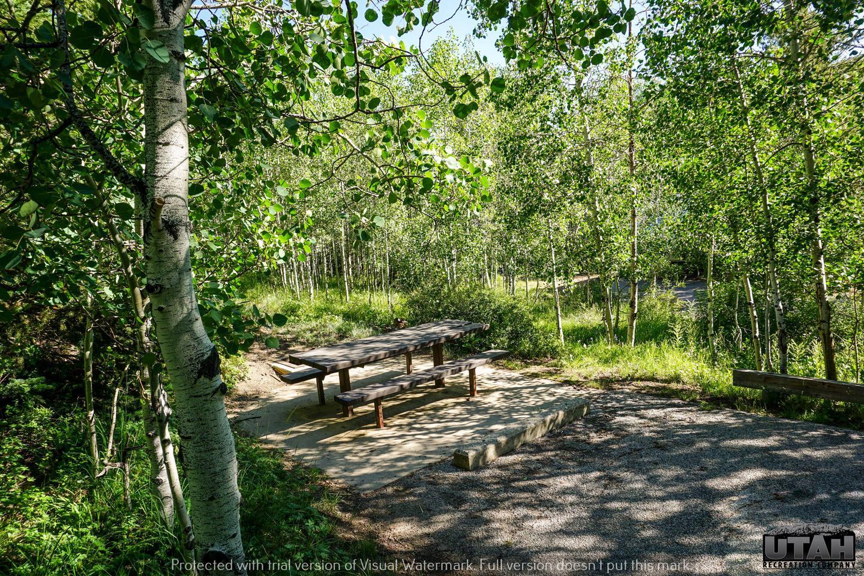 Aspen Grove Campground A - 004