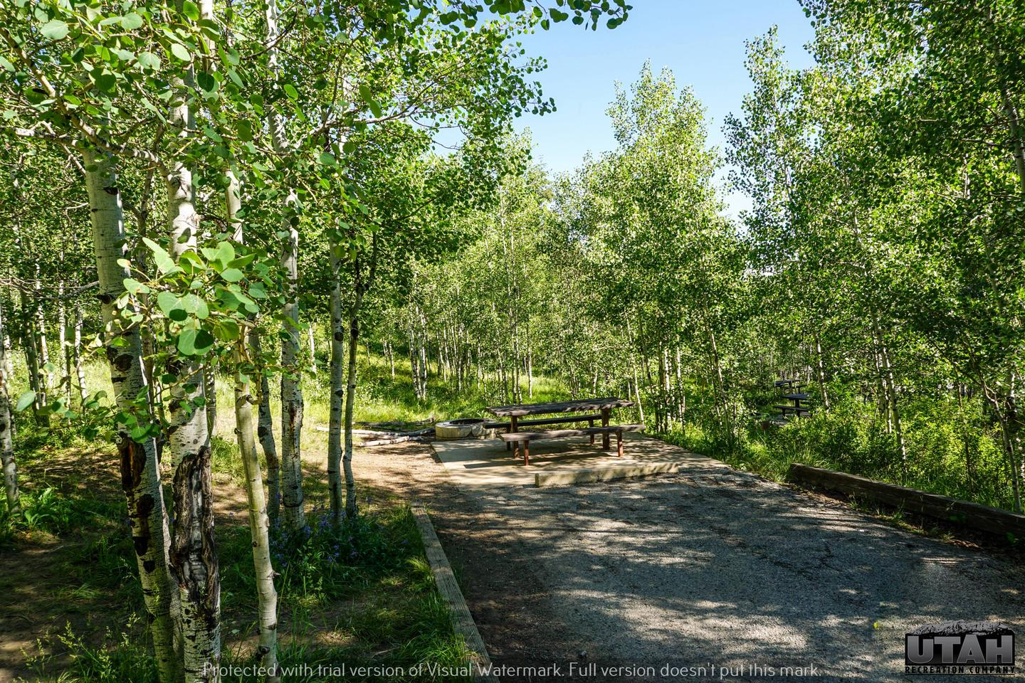Aspen Grove Campground A - 010