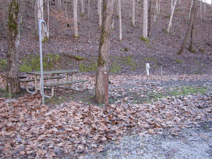 Non Lakefront SiteJr Ranger Site 26