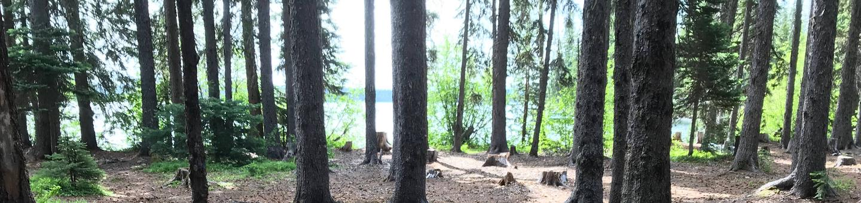 Big Cove CampgroundBig Cove Site 4