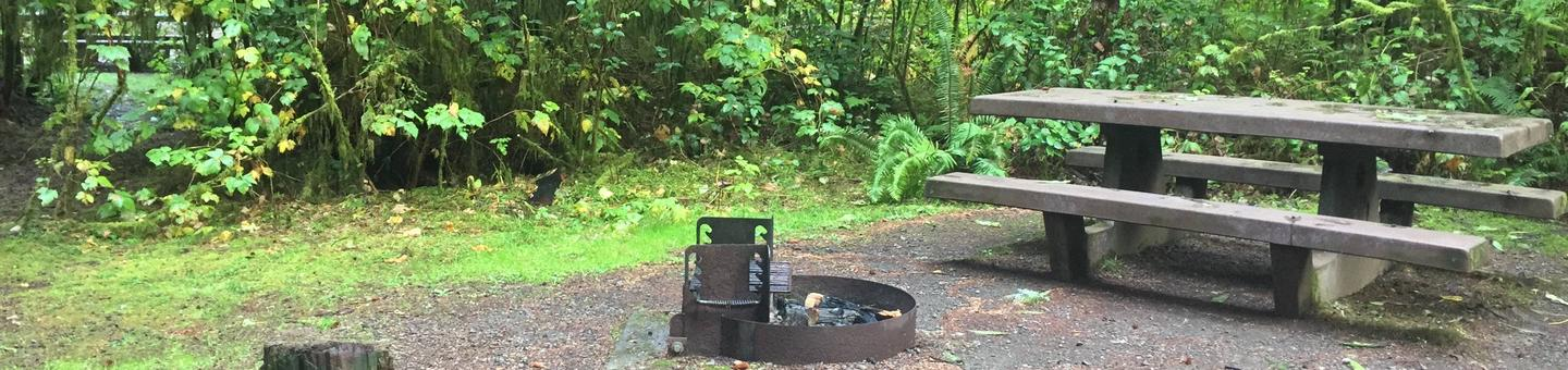 Campsite with picnic table and fire ring. Mora Campground Campsite
