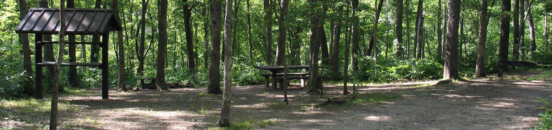 Campsite 31