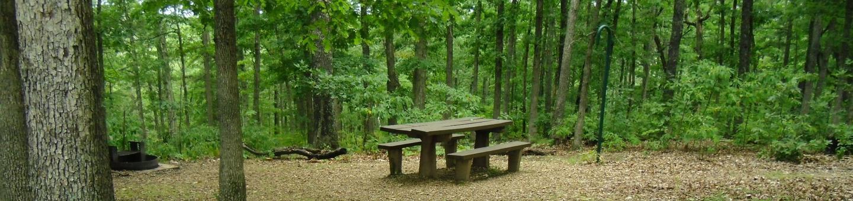 Walk-in Campsite 4