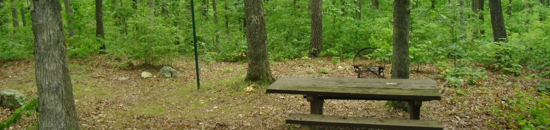 Walk-in Campsite 8