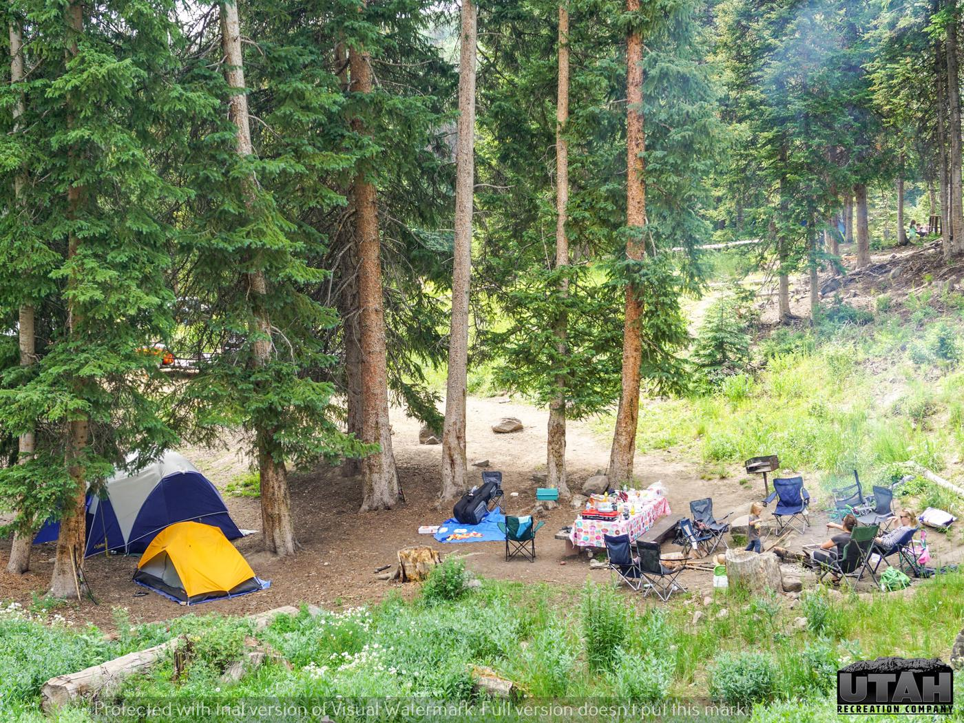 Mill Hollow Campground A - 006