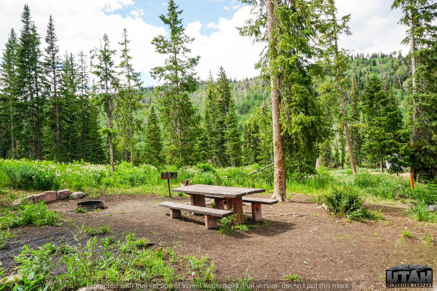 Mill Hollow Campground A - 013
