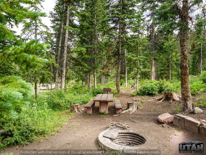 Mill Hollow Campground B - 014