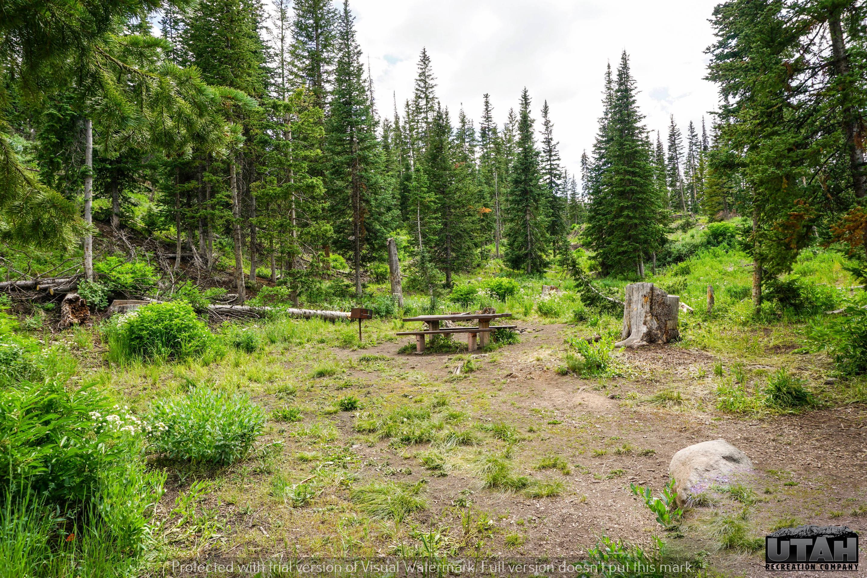 Mill Hollow Campground B - 016
