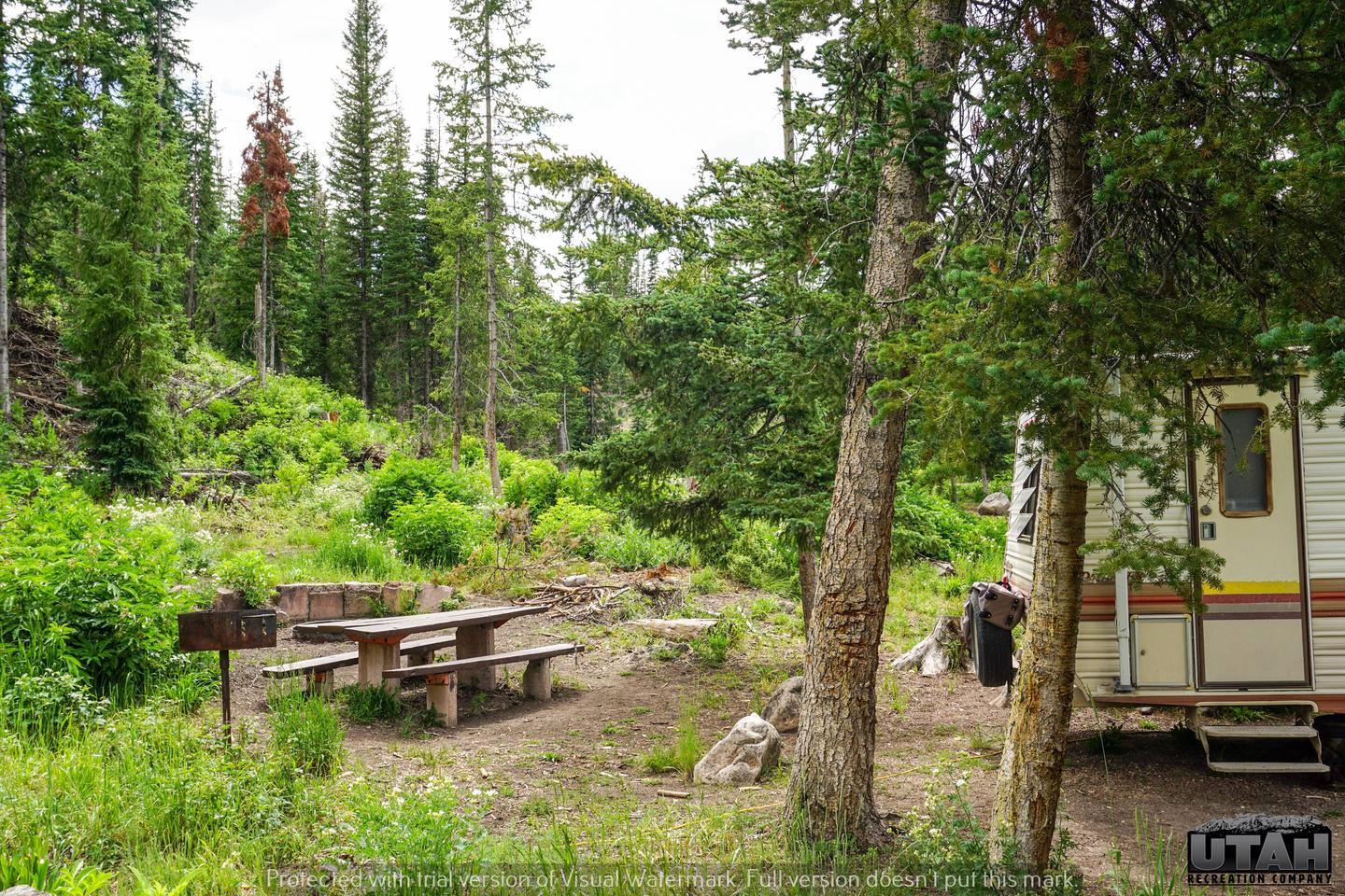 Mill Hollow Campground B - 017