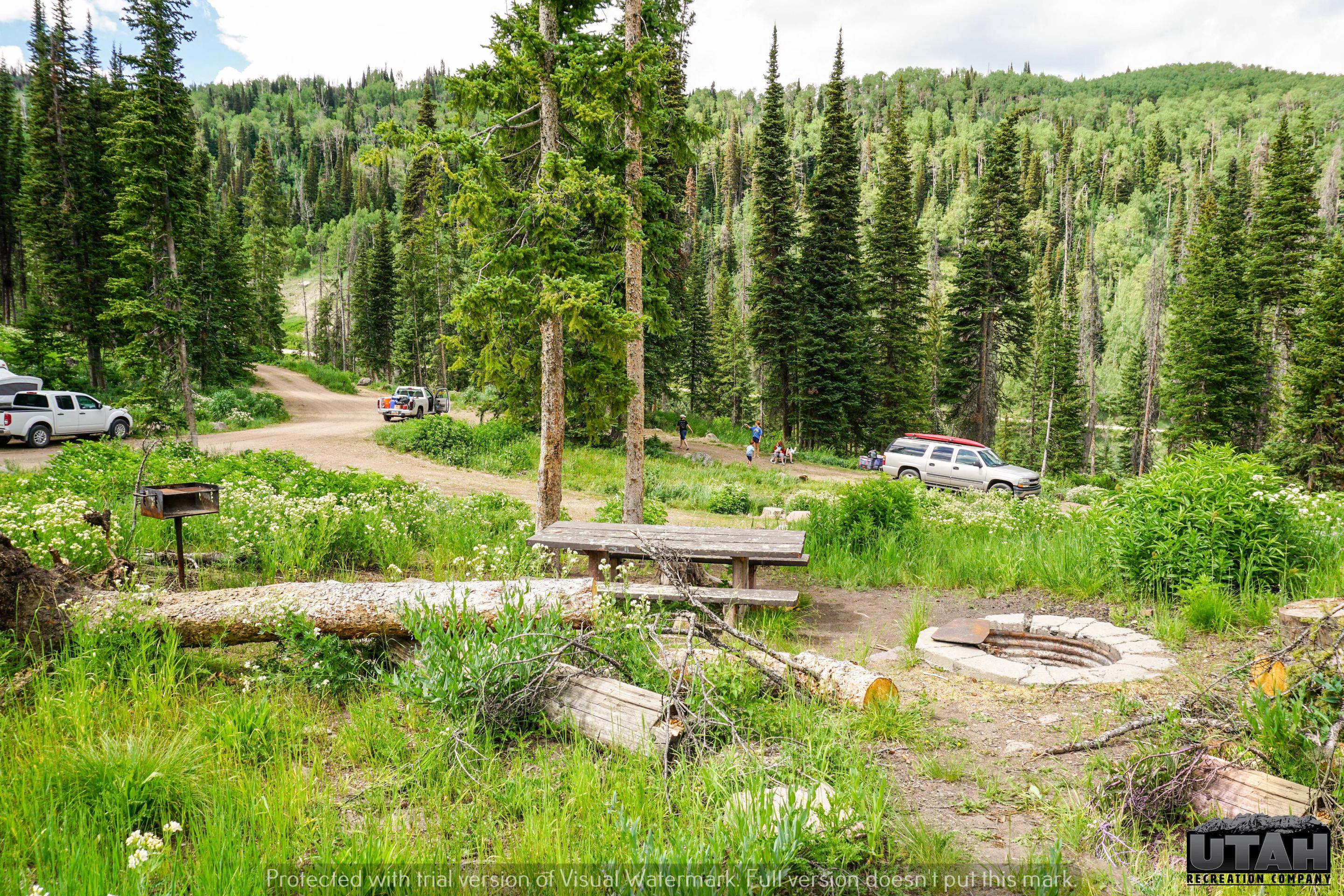 Mill Hollow Campground B - 020