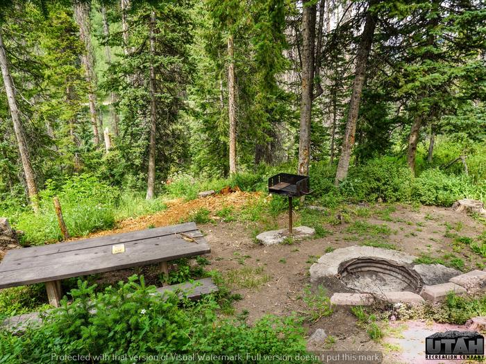 Mill Hollow Campground B - 022