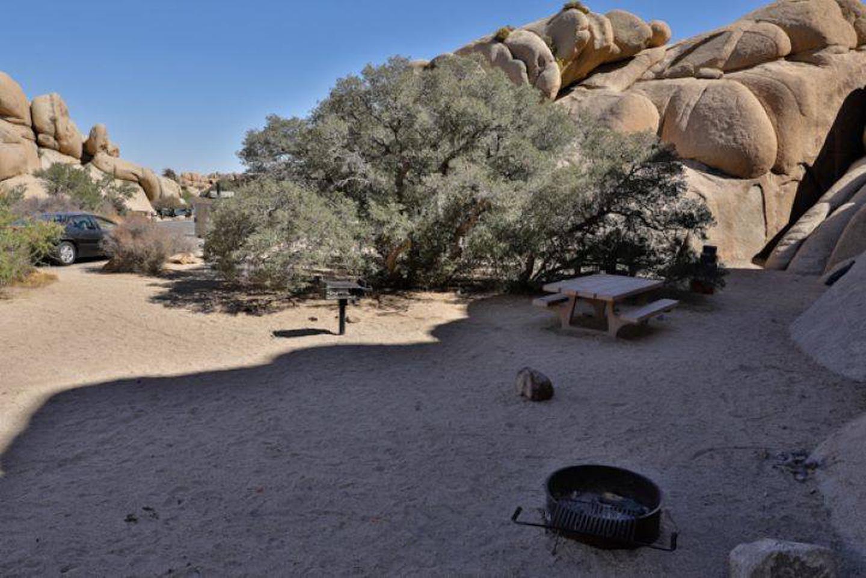 Jumbo Rocks-site 1Spacious