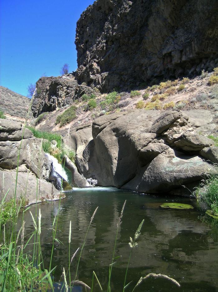 Douglas CreekView of Douglas Creek