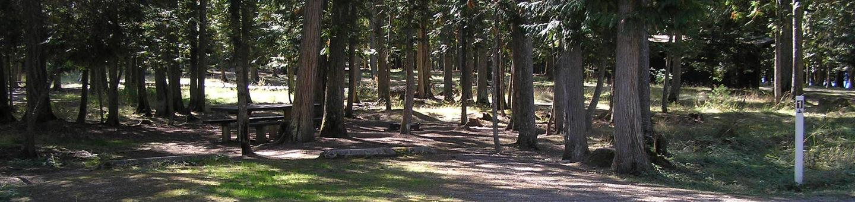 Sam Owen Campground Site 1