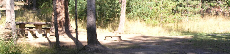 Sam Owen Campground Site 2