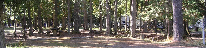 Sam Owen Campground Site 3