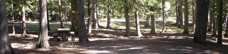 Sam Owen Campground Site 10