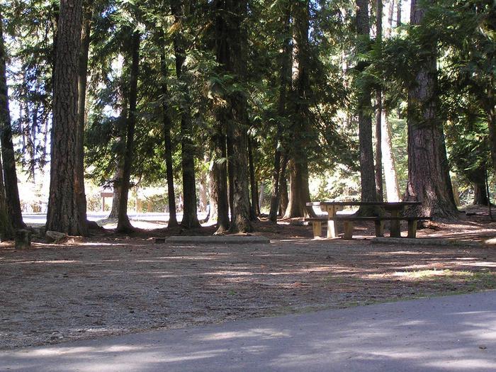 Sam Owen Campground Site 13
