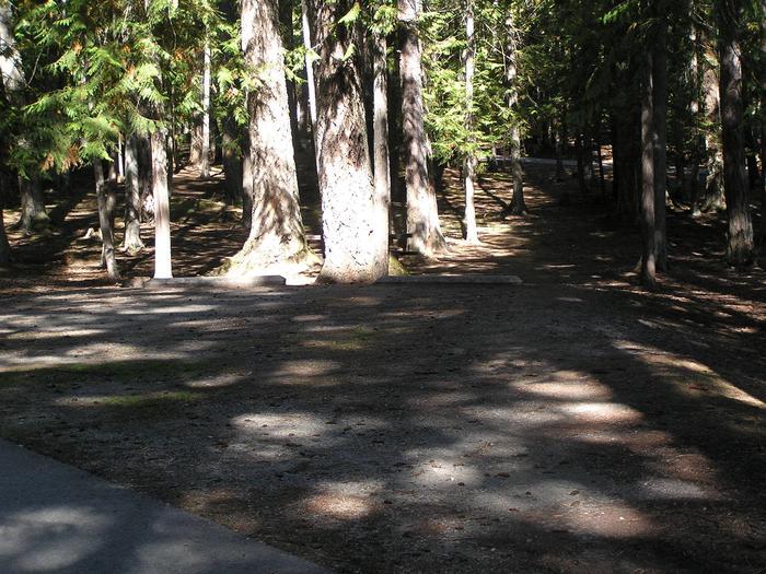 Sam Owen Campground Site 14