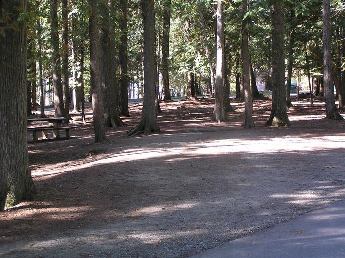 Sam Owen Campground Site 15