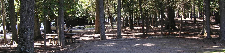 Sam Owen Campground Site 17