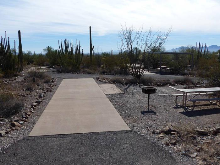 Pull-thru campsite with picnic table and grill, cactus and desert vegetation surround site.  Site 012