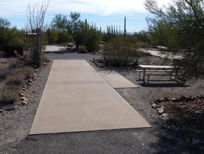 Pull-thru campsite with picnic table and grill, cactus and desert vegetation surround site.  Site 005