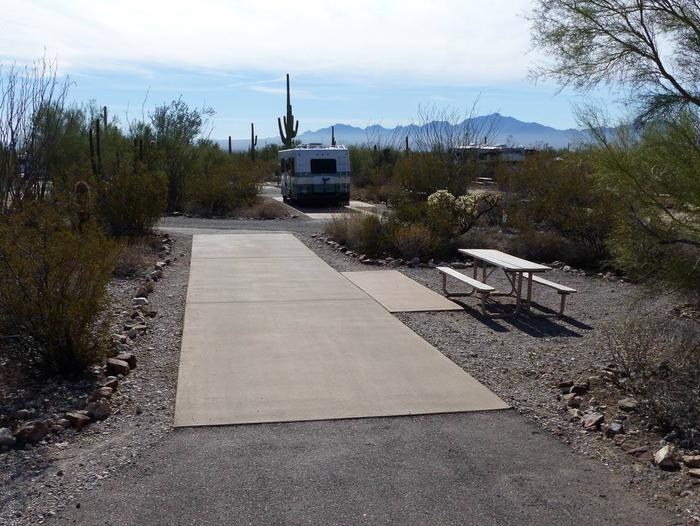 Pull-thru campsite with picnic table and grill, cactus and desert vegetation surround site.  Site 009