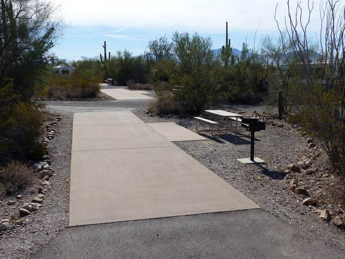 Pull-thru campsite with picnic table and grill, cactus and desert vegetation surround site.  Site 010