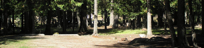 Sam Owen Campground Site 19