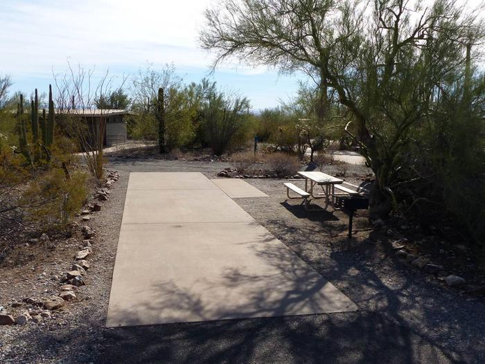 Pull-thru campsite with picnic table and grill, cactus and desert vegetation surround site.  Site 013
