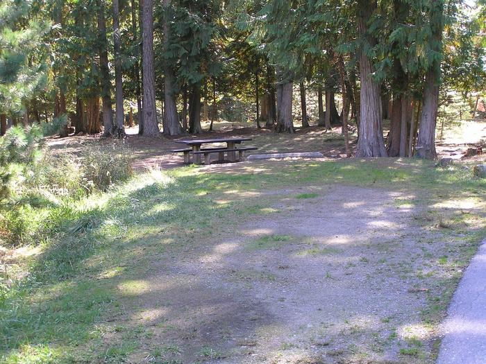 Sam Owen Campground Site 23