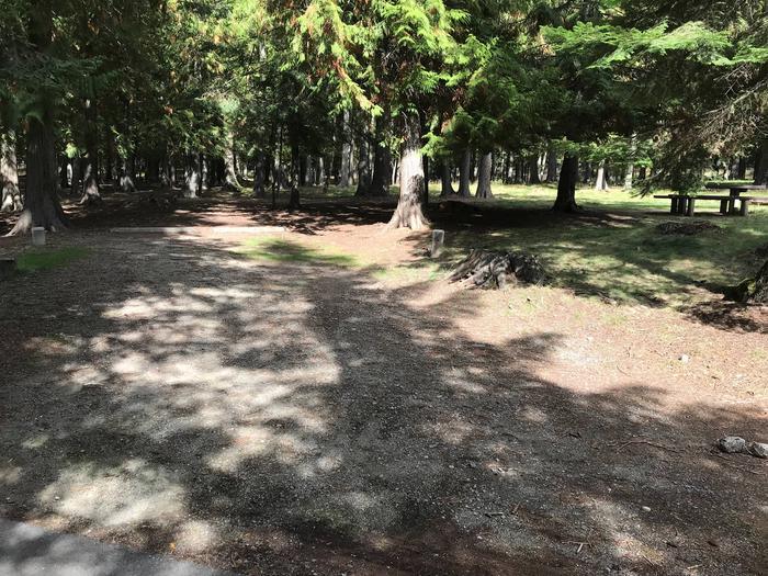 Sam Owen Campground Site 40