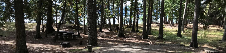 Sam Owen Campground Site 41