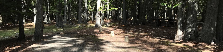 Sam Owen Campground Site 42